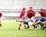 20131113_流経柏_113.jpg
