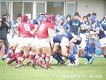 20131113_流経柏_121.jpg