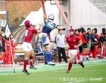 20131113_流経柏_125.jpg
